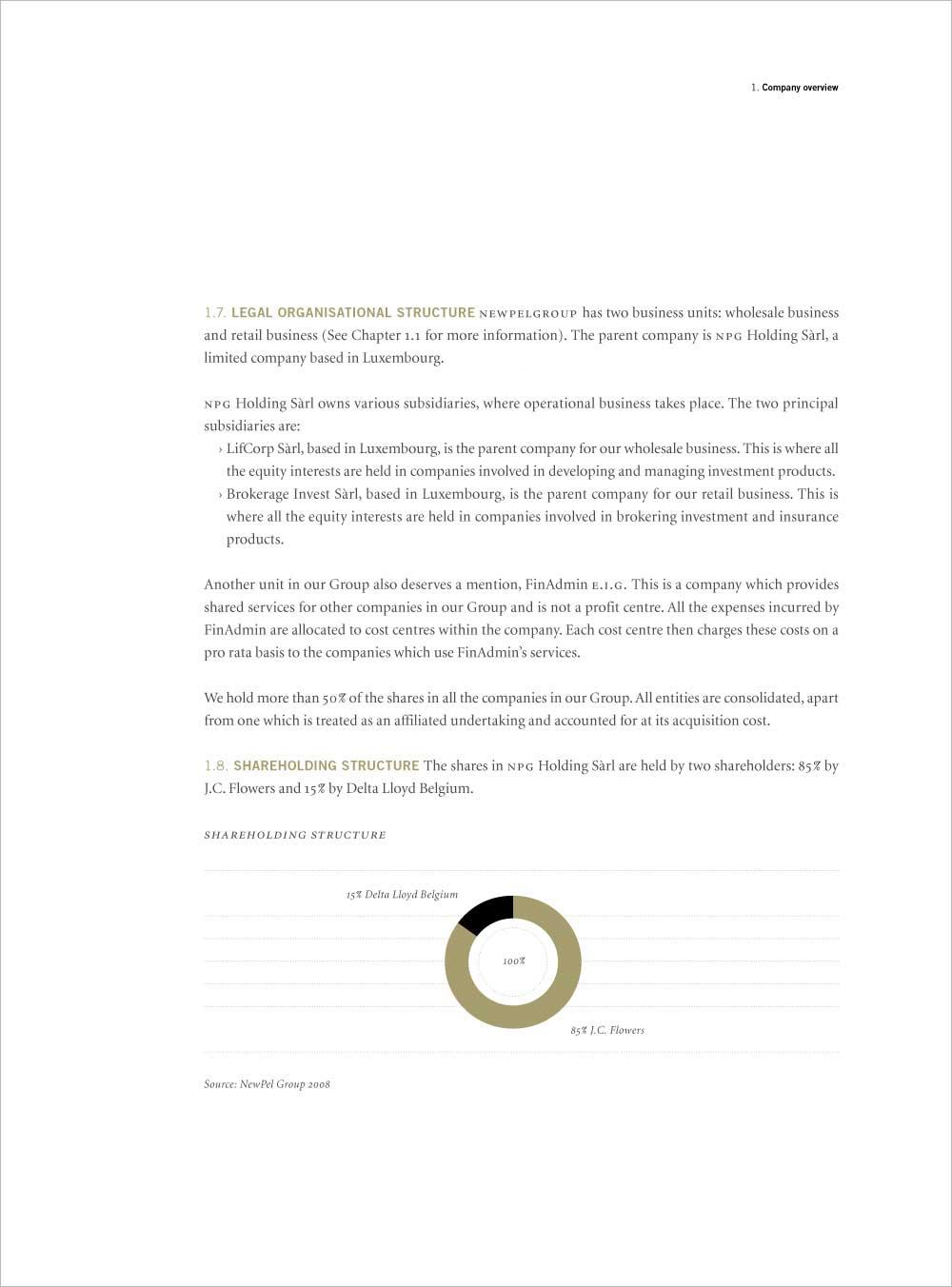 J. C. Flowers & Company, Innenseite mit Diagramm, NPG Geschäftsbericht, 2009.